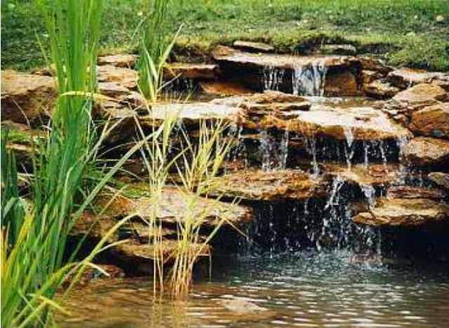 водоем на участке