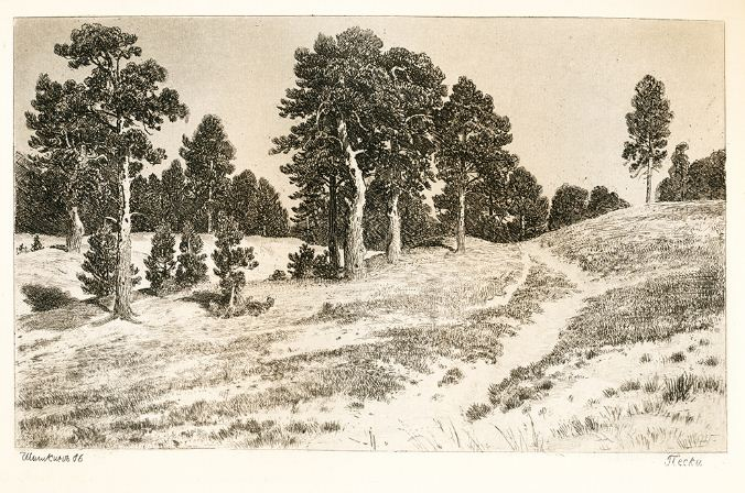 "И. И. Шишкин "" Пески"". Бумага, офорт ( 1886 год)."