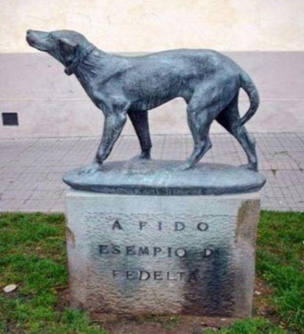 Памятник псу Фидо в городе Борго - Сан - Лоренцо