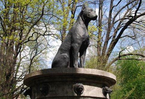 Монумент безымянной собаке в Санкт - Петербурге