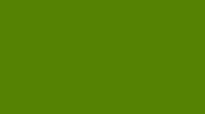 Один из вариантов оттенка цвета авокадо