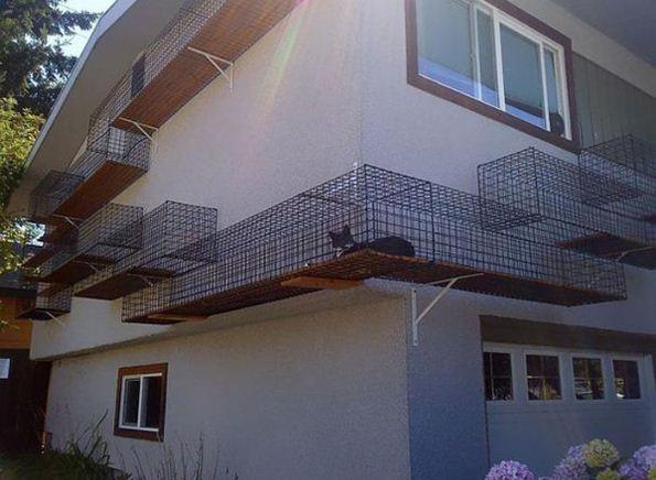 Фасад дома с огороженным сеткой подиумом для прогулки кошек