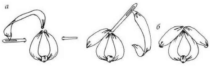 Петелька с прикрепкой и прямым швом