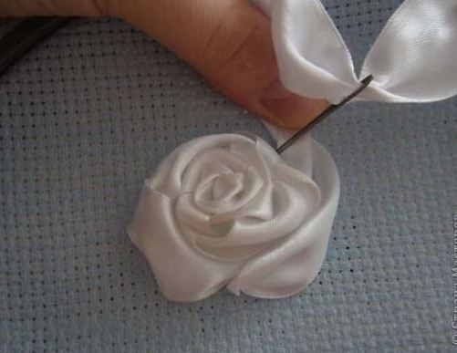 Выпуклый бутон розы