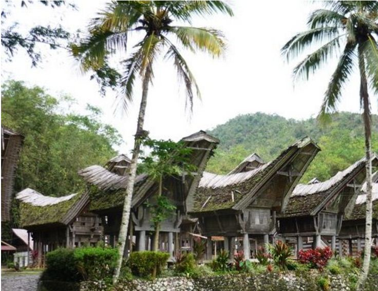Деревня племени тана тораджа