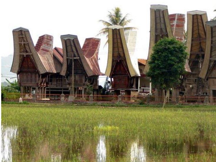 Дома жителей племени тана тораджа