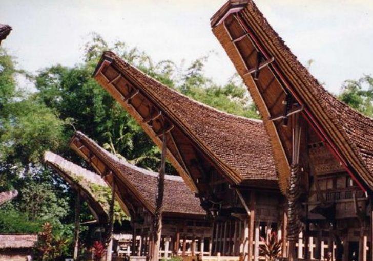 Диковинные дома с крышами в форме полумесяца