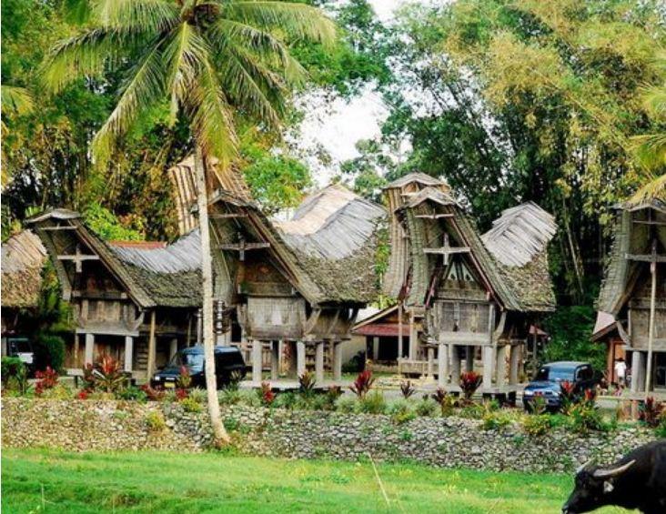 Деревня в Тораджаланде