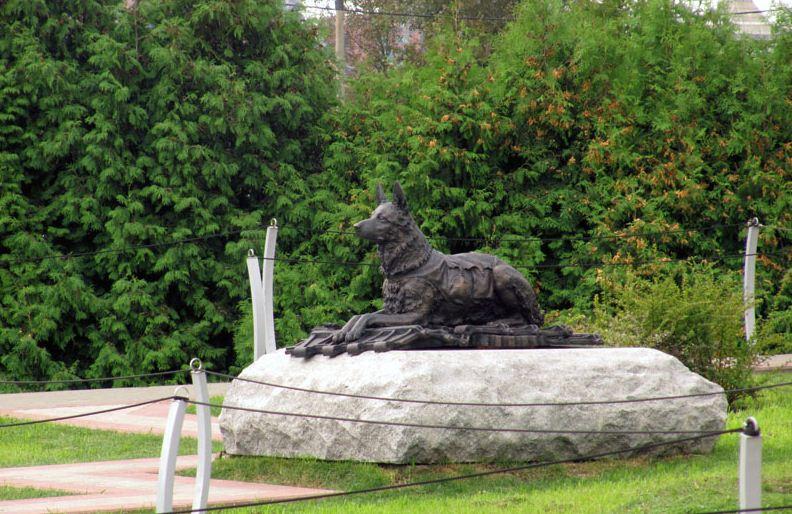 Памятник фронтовой собаке в Парке Победы