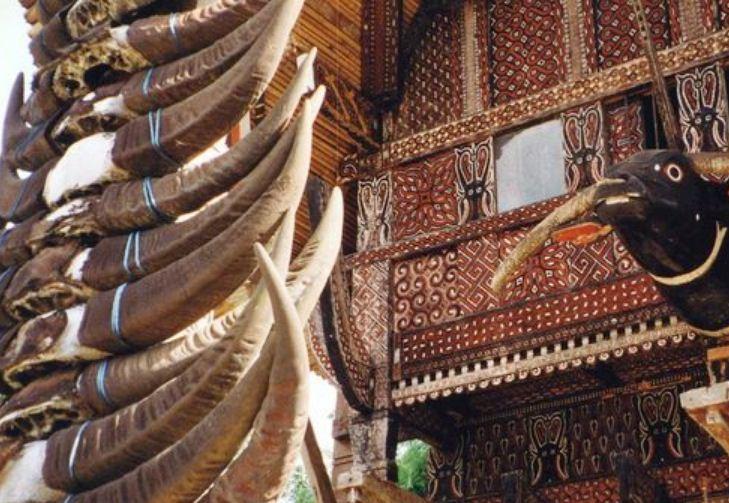 Декор наружной отделки дома и множество рогов буйвола