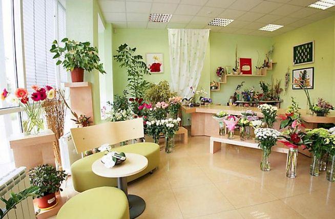 Цветы и комнатные растения в интерьере