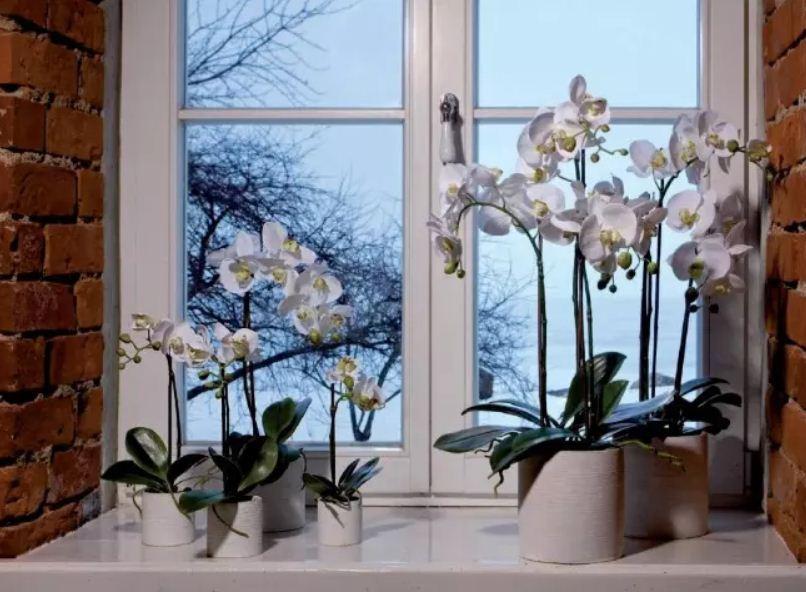 Искусственные цветы равнодушны к температурным колебаниям и могут размещаться даже в самых холодных комнатах