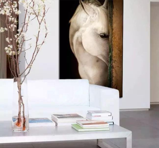 Постер с фантастически красивой белой лошадью