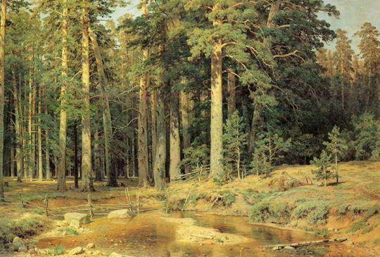 """И. И. Шишкин. Пейзаж """" Корабельная роща"""" ( 1898 год)."""