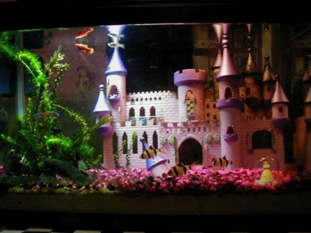 Дизайн аквариума по сюжету сказки.