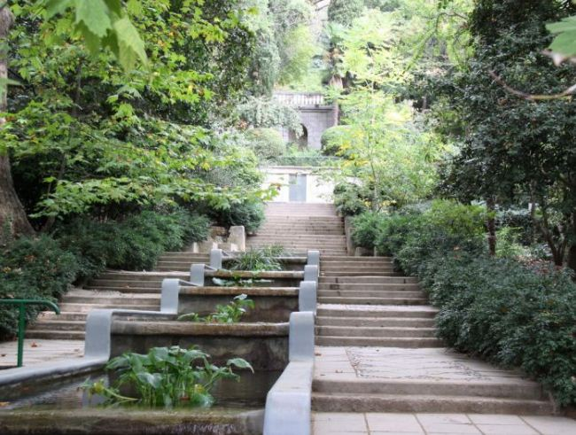 Никитский ботанический сад.