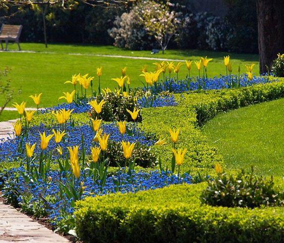 Яркие цветочные клумбы на территории ботанического сада.