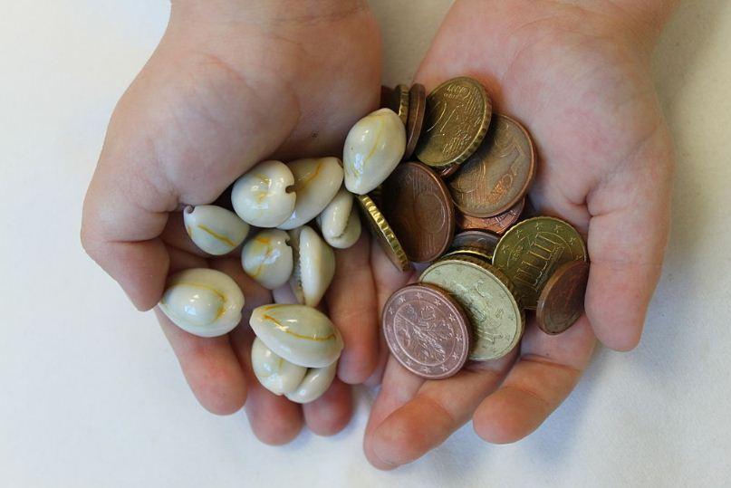 Раковины Каури долгое время использовались в качестве денежной единицы